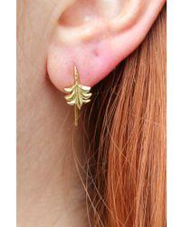 Anna + Nina - Palm Earrings - Lyst