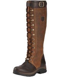 Ariat Ladies Berwick Tall Gtx Boots - Brown