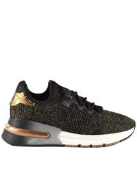 Ash Krush Sneakers In Black And Gold Knit