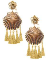 Mercedes Salazar Rose Coquille Shell Earrings - Metallic