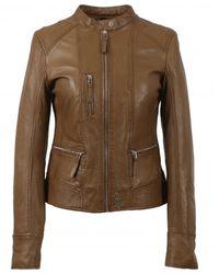 Oakwood Each Collarless Biker Jacket - Brown