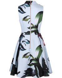 Ted Baker - Women's Evvia Eden Ruffle Front Skater Dress - Lyst