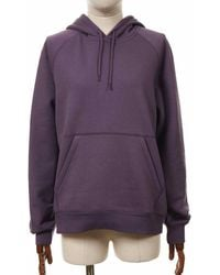 Carhartt Wip Chase Hooded Sweatshirt - Provence Colour: Proven - Brown