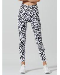 Lilybod Snow White Leopard Kendra Leggings - Black