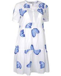 0039 Italy Ricci Knee Length Butterfly Dress & Blue