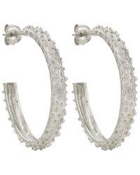 Zoe & Morgan Komodo Hoop Earrings - Metallic