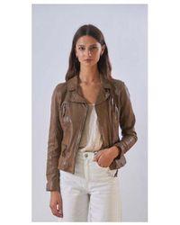 Oakwood Camera Distressed Leather - Brown