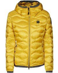 Blauer Usa Coats - Yellow