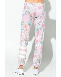 Sundry Stripe Sweat Pant - Multicolour