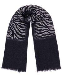 Destin Scarf With Zebra Print - Black