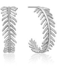 Ania Haie Palm Hoop Earrings - Metallic