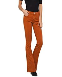 Replay Flare Fit Stella Jeans - Brown