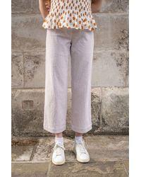 Sessun Cybill Summer Orchid Bloom Velvet Trousers - Multicolour