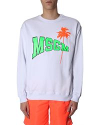 MSGM Sweatshirt With Fluo Logo And Palm - White