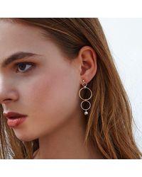 Alison Fern Jewellery Finn Circle And Drop Earrings - Metallic