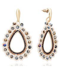 Azuni London Siona Teardrop Hoop Crystal Earrings Lynx - Metallic
