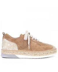 Kanna K2251 Sneakers In Brown