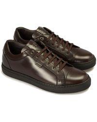 Brioni Leather Trainer - Brown