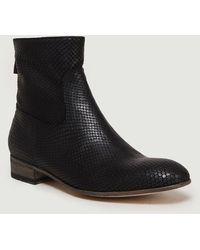 Anthology 7227 Boots Python Noir - Black