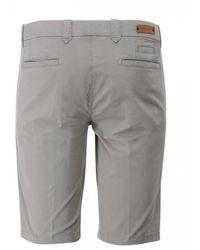 Corneliani Chino Shorts (stone) - Gray
