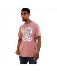 Ted Baker Stowart Bird T Shirt - Pink