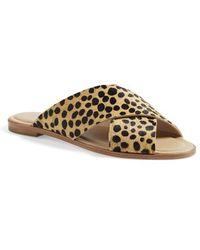 Loeffler Randall 'Echo' Calf Hair Sandal - Lyst