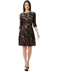 Adrianna Papell Lace Piped Fit and Flare Dress - Lyst