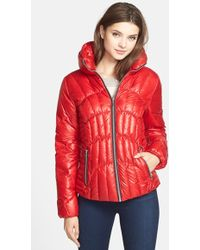 Guess Fitted Down & Feather Jacket - Lyst