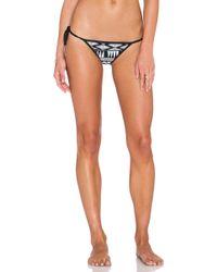 Seafolly Future Tribe Bikini Bottoms black - Lyst