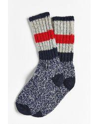 Woolrich Full Stripe Crew Sock - Gray