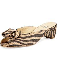 Stuart Weitzman Candy Zebra-print Woven Bow Slide Sandal - Lyst