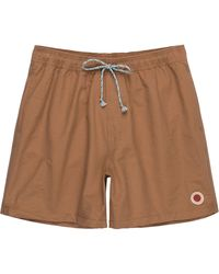 Mollusk Vacation Trunk - Brown