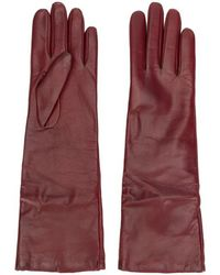 P.A.R.O.S.H. Full Gloves - Red