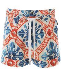 Dolce & Gabbana Majolica Print Shorts - Blue