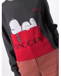 Iceberg Sweaters Grey - Multicolour
