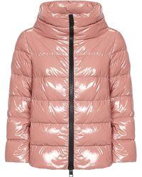 Herno Jackets Pink