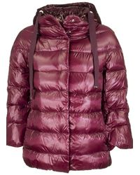 Herno Bordeaux Down Jacket With Hood - Purple