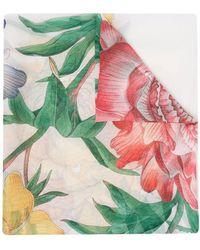 Ferragamo Creations Scarfs White - Multicolor