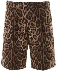 Dolce & Gabbana Leopard Print Bermuda Pants - Brown