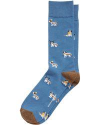 Banana Republic Allover Dogs Sock - Blue