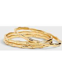 Banana Republic Bamboo Bangle Bracelet Set - Metallic