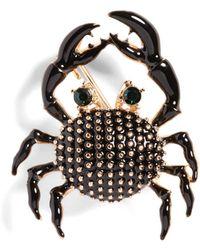 Banana Republic Crab Brooch - Black