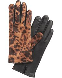 Banana Republic Animal Print Leather Gloves - Brown