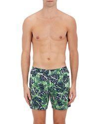 Vilebrequin Merise Tropical - Green
