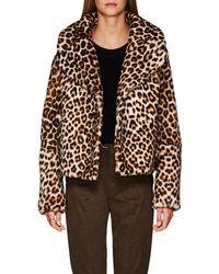 A.L.C. Grant Leopard - Multicolor