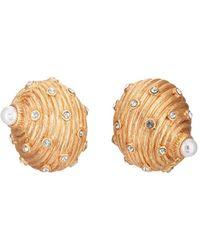 Kenneth Jay Lane Seashell Stud Earrings - Metallic