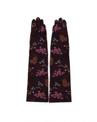 Antipast Gloves - Womens - Purple/bordeaux