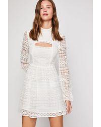 BCBGeneration - Peek-a-boo Lace Dress - Lyst