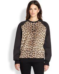 Just Cavalli Gipsy Catprint Sweatshirt - Lyst