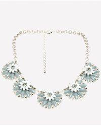 Bebe - Floral Starburst Necklace - Lyst